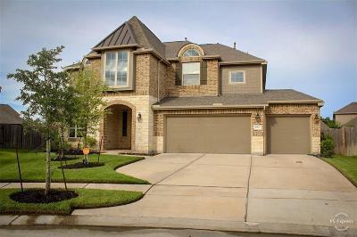 Lakes Of Savannah Single Family Home For Sale: 4807 Sunset Park Lane