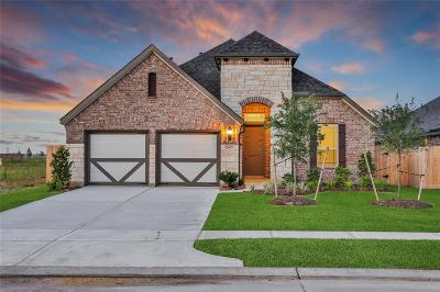 Katy Single Family Home For Sale: 24427 Piney Harbor Lane