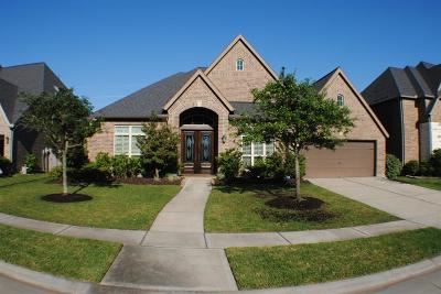 Katy Single Family Home For Sale: 2407 Haven Hill Drive