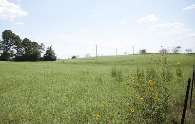 Farm & Ranch For Sale: 1 Loop 497