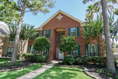 Houston Single Family Home For Sale: 18815 Evergreen Falls Drive
