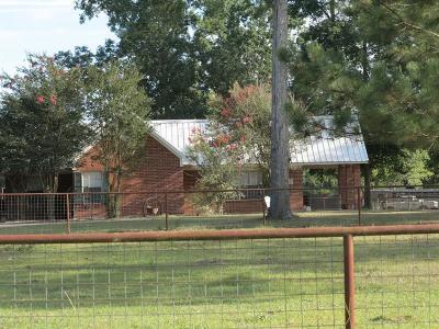 Conroe Farm & Ranch For Sale: 15294 Magnolia Park