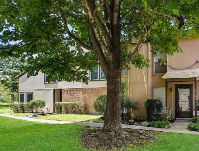 Houston Condo/Townhouse For Sale: 7703 Bateman Lane