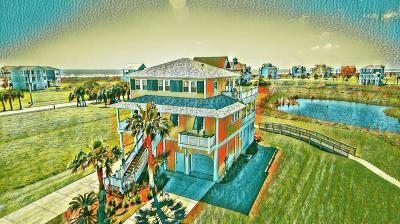 Galveston Single Family Home For Sale: 4110 Royal Tern Lane