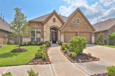 Missouri City Single Family Home For Sale: 2031 Silver Moon Drive