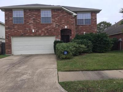 Katy Single Family Home For Sale: 6031 Destiny Park Court