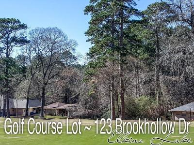 Walker County Single Family Home For Sale: 123 Brookhollow Drive