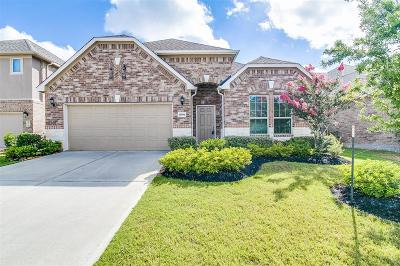 Katy Single Family Home For Sale: 28506 English Turn Drive