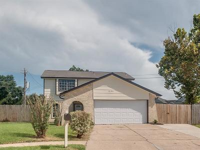 Houston Single Family Home For Sale: 1206 Castle Glen Drive