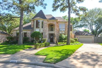 Katy Single Family Home For Sale: 22015 Fielder Drive