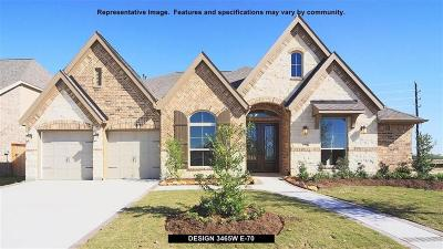 Katy Single Family Home For Sale: 6619 Andorra Meadow Trail