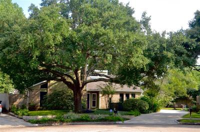 Houston Single Family Home For Sale: 2131 Manor Green Drive