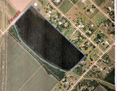 Fort Bend County Country Home/Acreage For Sale: Fenske Road