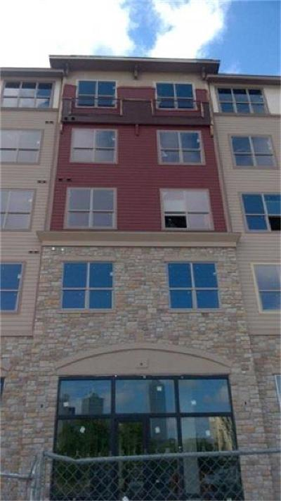 Dallas County Rental For Rent: 1400 Belleview