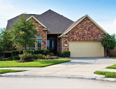 League City Single Family Home For Sale: 2002 Nogalas Lane
