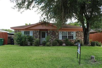 Houston Single Family Home For Sale: 8910 Klondike Street