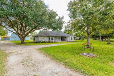 Alvin Single Family Home For Sale: 617 County Road 941d