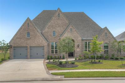 Spring Single Family Home For Sale: 25006 Rosa Aurora Way