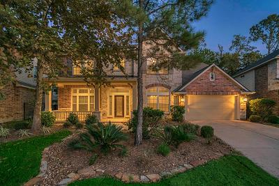 The Woodlands Single Family Home For Sale: 146 S Arrow Canyon Circle