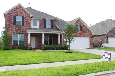 Katy Single Family Home For Sale: 25622 Foxrun Vista Drive