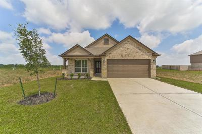 Rosenberg Single Family Home For Sale: 2618 Zephyr Lane