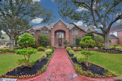 Katy Single Family Home For Sale: 20015 Chasestone Court