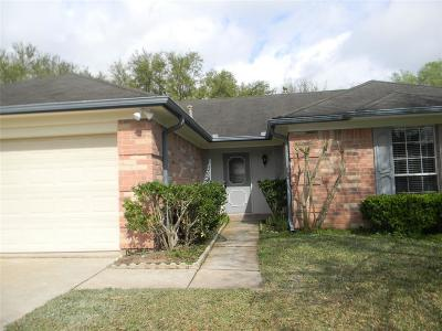 Sugar Land Single Family Home For Sale: 4523 Alamo Avenue