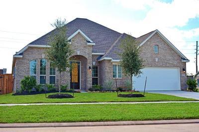 Sugar Land Single Family Home For Sale: 6226 Garden Lakes Lane