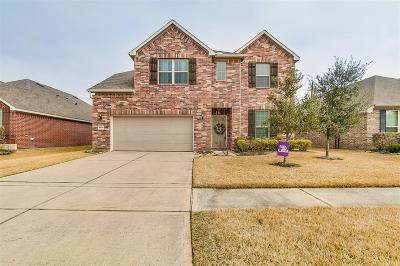 Tomball Single Family Home For Sale: 24526 Emerald Pool Falls Drive