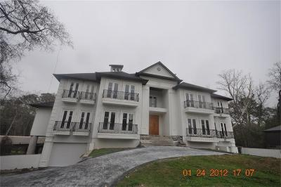 Houston Single Family Home For Sale: 115 Big Hollow Lane