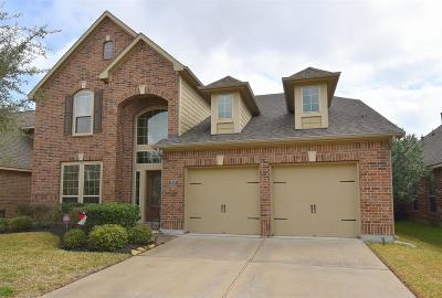 Pearland Single Family Home For Sale: 2909 Village Brook Lane