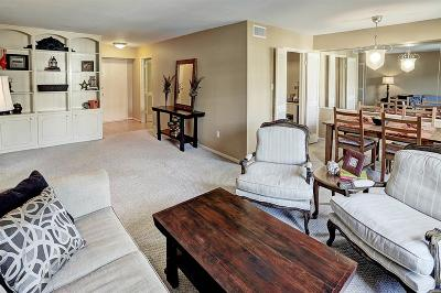 Houston TX Condo/Townhouse For Sale: $140,000