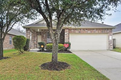 Dickinson Single Family Home For Sale: 6719 Hidden Colony Lane