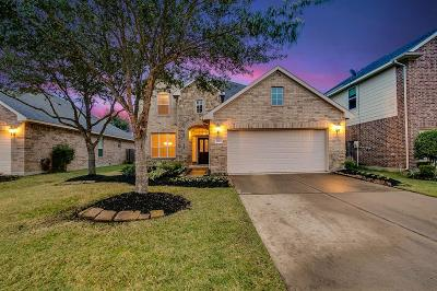 Katy Single Family Home For Sale: 6223 Summerfield Glade Lane