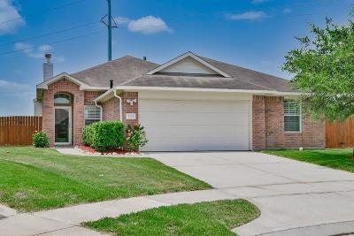 Alvin Single Family Home For Sale: 5235 Bailey Lane