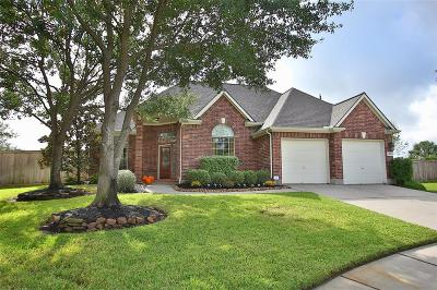 Single Family Home For Sale: 1302 Matson Manor Court
