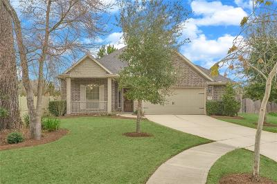 Conroe Single Family Home For Sale: 8154 Black Percher Street