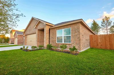 Conroe Single Family Home For Sale: 7630 Dragon Pearls Lane