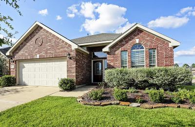 Single Family Home For Sale: 8902 Headstall Drive