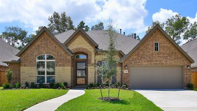 New Caney Single Family Home For Sale: 23550 Vernazza Drive