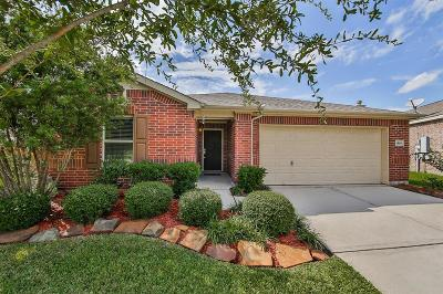 League City Single Family Home For Sale: 2801 Soffiano Lane