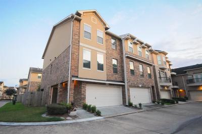 Condo/Townhouse For Sale: 8101 Silverton Creek Lane