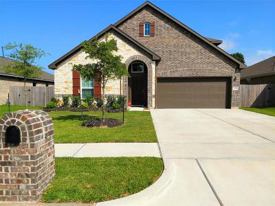 Baytown Single Family Home For Sale: 2438 Bay Hill Drive