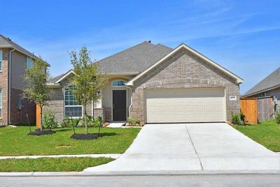 Rosharon Single Family Home For Sale: 13731 Arcadia Creek Lane