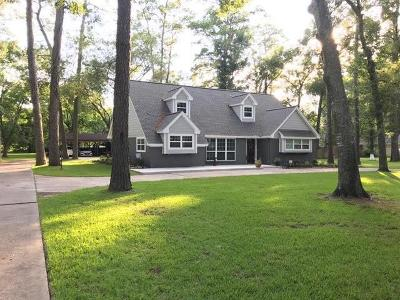 Houston Single Family Home For Sale: 16911 Creeksouth Road