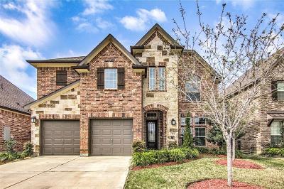 Webster Single Family Home For Sale: 524 Pedernales Street