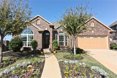Sugar Land Single Family Home For Sale: 203 Callavance