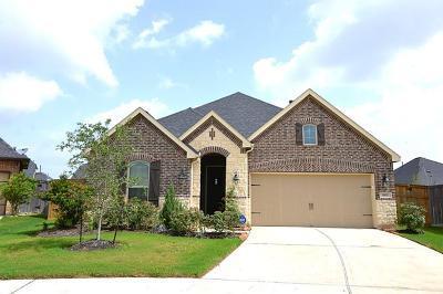 Fulshear Single Family Home For Sale: 3502 Big Hickory Court