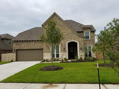 Lakes Of Savannah Single Family Home For Sale: 4718 Applewood Crest Lane