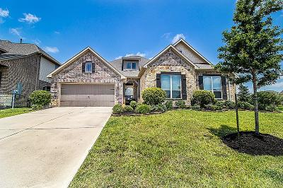 Friendswood Single Family Home For Sale: 1104 Parkers Creek Lane